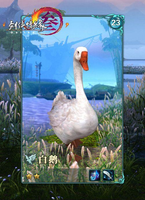 剑网3鹅类跟宠获取流程攻略 呆头鹅/白鹅/小灰获得方法