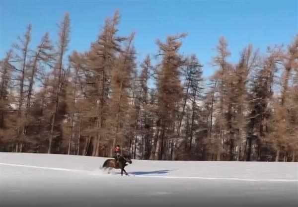 新疆快递员雪地骑马送快递:骑马来的不只王子