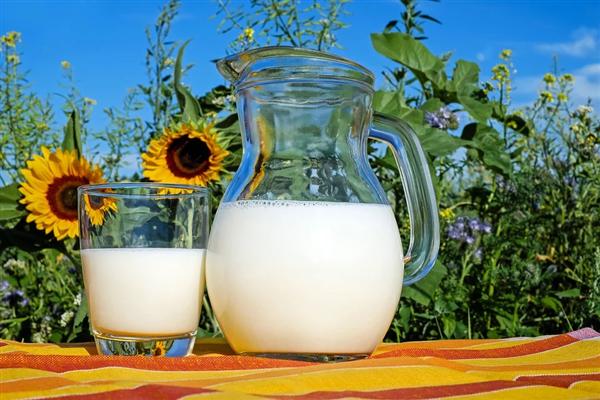 每天喝牛奶可增高?这些日常喝牛奶的误解,现在知道还不晚