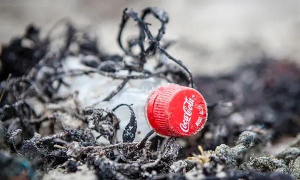 """可口可乐第三次被评为最大塑料污染者:对减少塑料垃圾""""零贡献"""""""