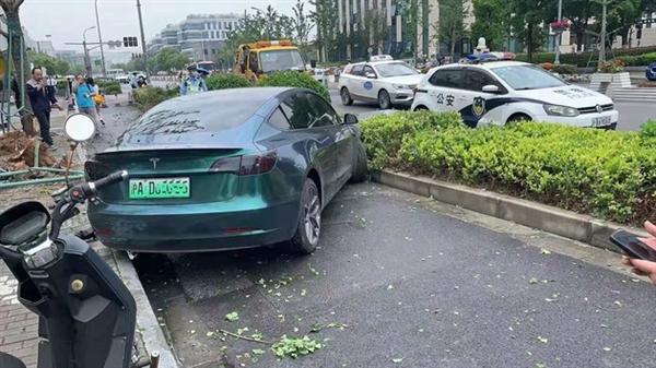 又失控?网传上海一特斯拉Model 3撞树 连根拔起