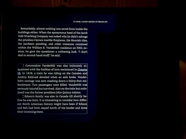 万元iPad Pro翻车!屏幕出现光晕 影响阅读