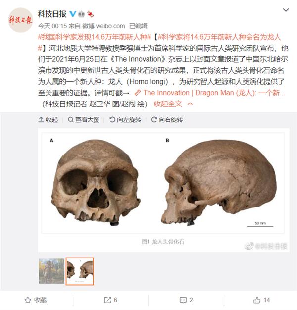 科学家在东北发现14.6万年前新人种:命名为龙人