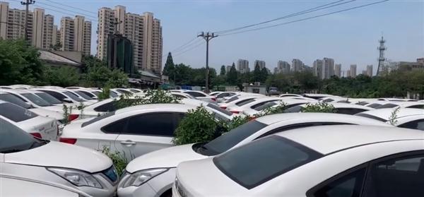 """杭州郊外惊现网约车""""坟场""""!数千辆新能源车遭弃"""