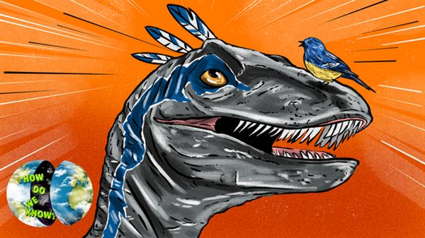 其实 鸟类就是恐龙!为什么这么说呢?