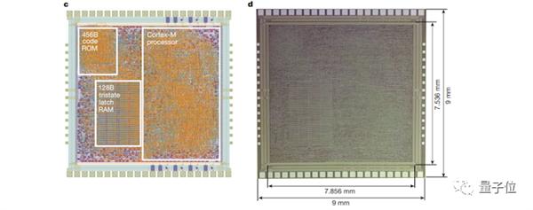 全球首个塑料ARM芯片登上Nature:成本仅同类硅芯片1/10