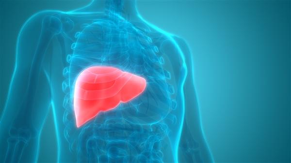 我国现有乙肝病毒携带者约8600万人:会导致肝癌