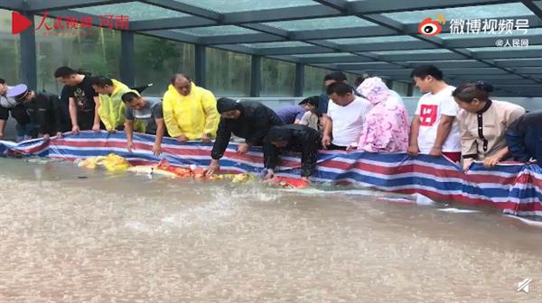 教科书式自救!暴雨后郑州一小区地库300多辆车完好无损