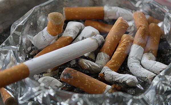 家长注意了!研究称父母吸烟将导致孩子更容易感冒