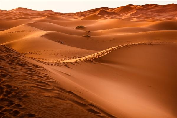 倒在沙漠里的16岁北京少年 专家:野外生存课程不适合未成年应禁止
