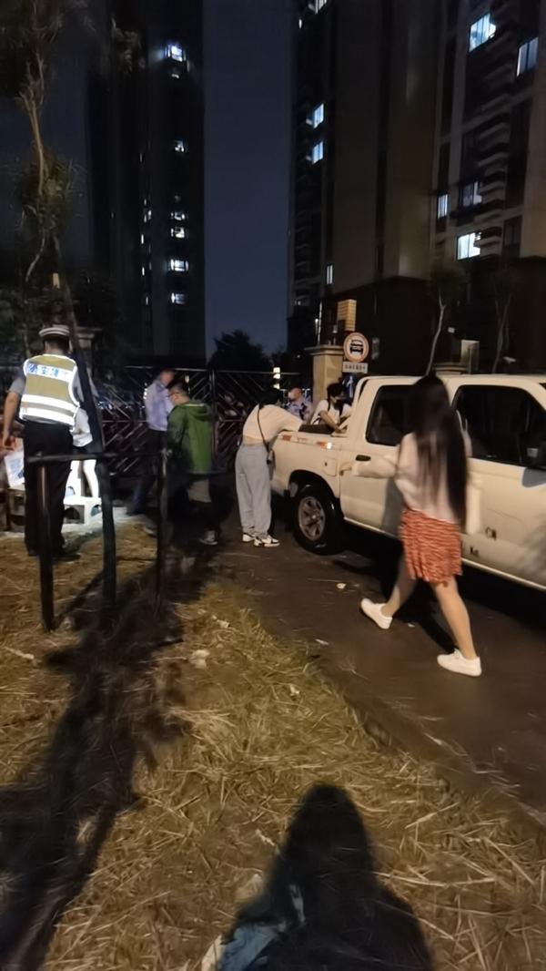 上海百余宠物盲盒被遗弃路边 快递不敢派送 后续来了